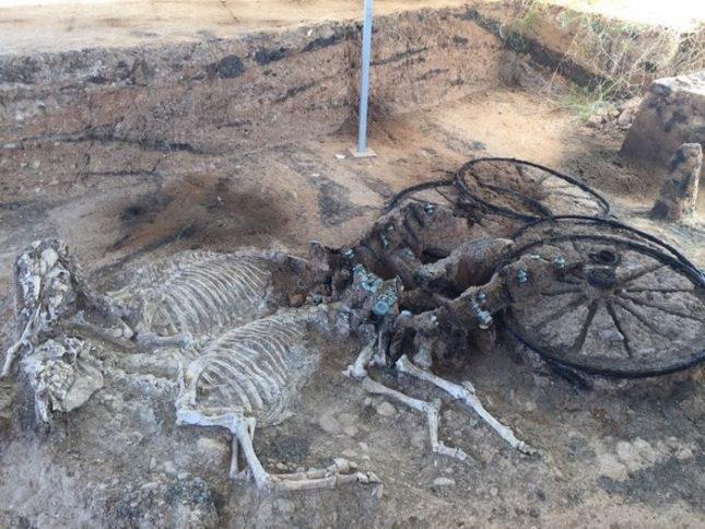 """В """"Източната могила"""" бе открито погребение на тракийски владетел, който според древнотракийския обичай е бил погребан със своята колесница, датирана от средата на І век след Христа. Снимки: Министерство на културата - Спешно укрепване на Карановската могила"""