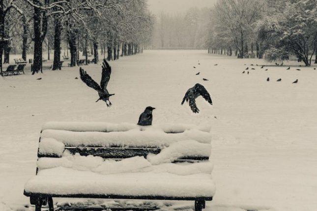Снимка: Георги Вълков, Moody Visuals - Душата ми плаче за сняг