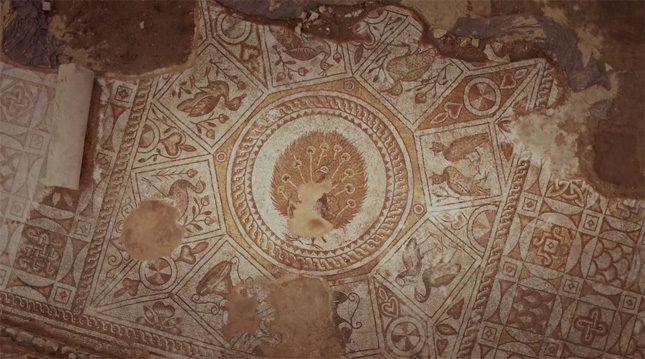 На пода на храма са изобразени 100 птици – и никоя не е еднаква с останалите.  - 100 птици от рая Филипопол (видео)