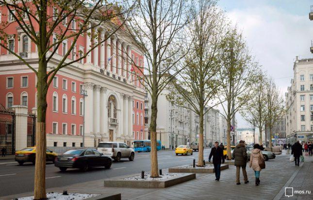 С чипове дърветата в Москва ще са киборги, както в сферата на медицината са наричани биологичните организми, съдържащи механични или електронни компоненти. Снимка: Мос.ру - Дървета-киборги плъзват из Москва