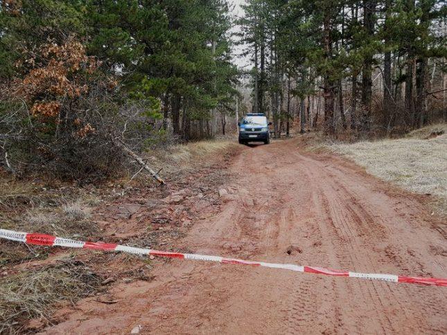 Боровата гора край Нови Искър, където бе открита една от жертвите на шесторното убийство. Снимка: БГНЕС - Килъри на езика, кървава баня на думите