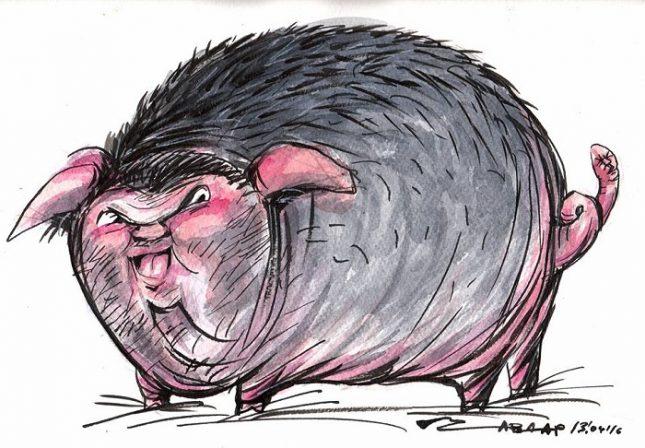 """Карикатура на Чавдар Николов - символ на протеста """"Стига вече свинщини"""" в подкрепа на свободата на словото, след като през 2016-а художникът бе отстранен от Нова тв. - Свободното падане, наречено """"българска журналистика"""""""