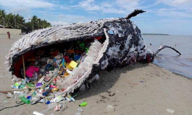 """""""Мъртвият кит"""", проект на Бибой Ройонг. Снимка: Винс Синчис, """"Грийнпийс Филипини"""" - НДК: На война срещу пластмасата"""